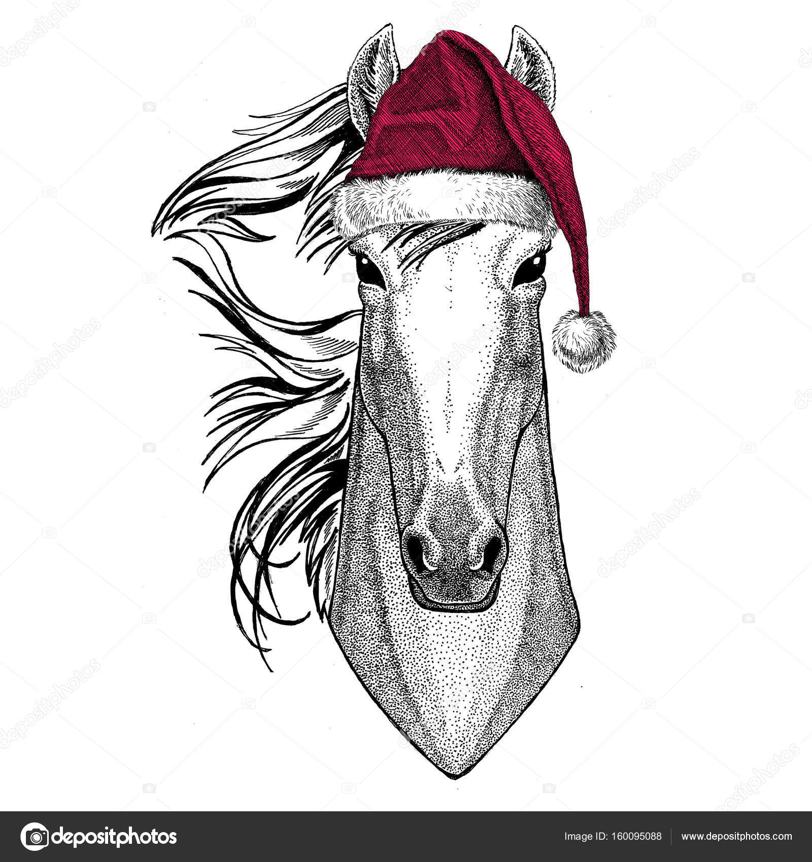 Horse Hoss Knight Steed Courser Christmas Illustration Wild Animal Wearing Christmas Santa Claus Hat Red Winter Hat Holiday Picture Happy New Year Stock Photo C Helen F 160095088