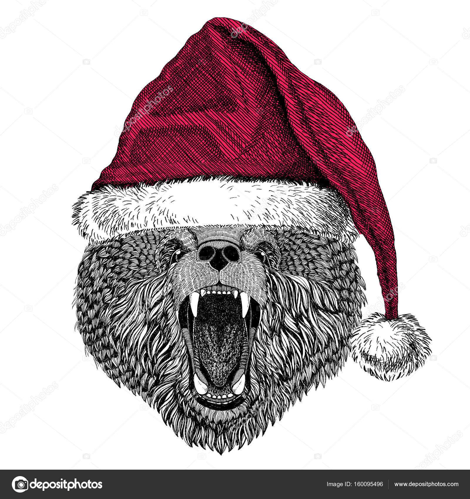 1cff74a0f00 Brown bear ruského medvěda vánoční obrázek divokých zvířat