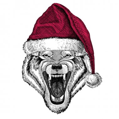 Wolf Dog Wild animal Christmas illustration Wild animal wearing christmas santa claus hat Red winter hat Holiday picture Happy new year