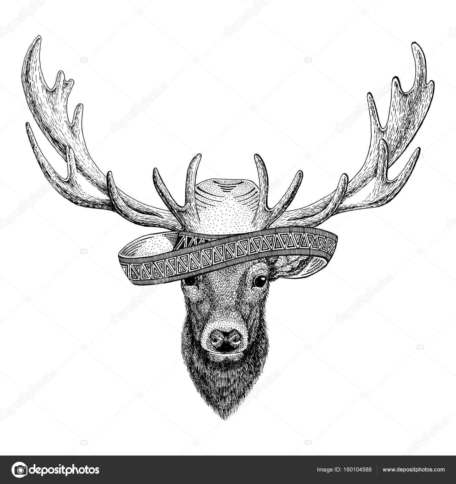 Imágenes Venados A Lapiz Sombrero Con Animales De Salvaje Del