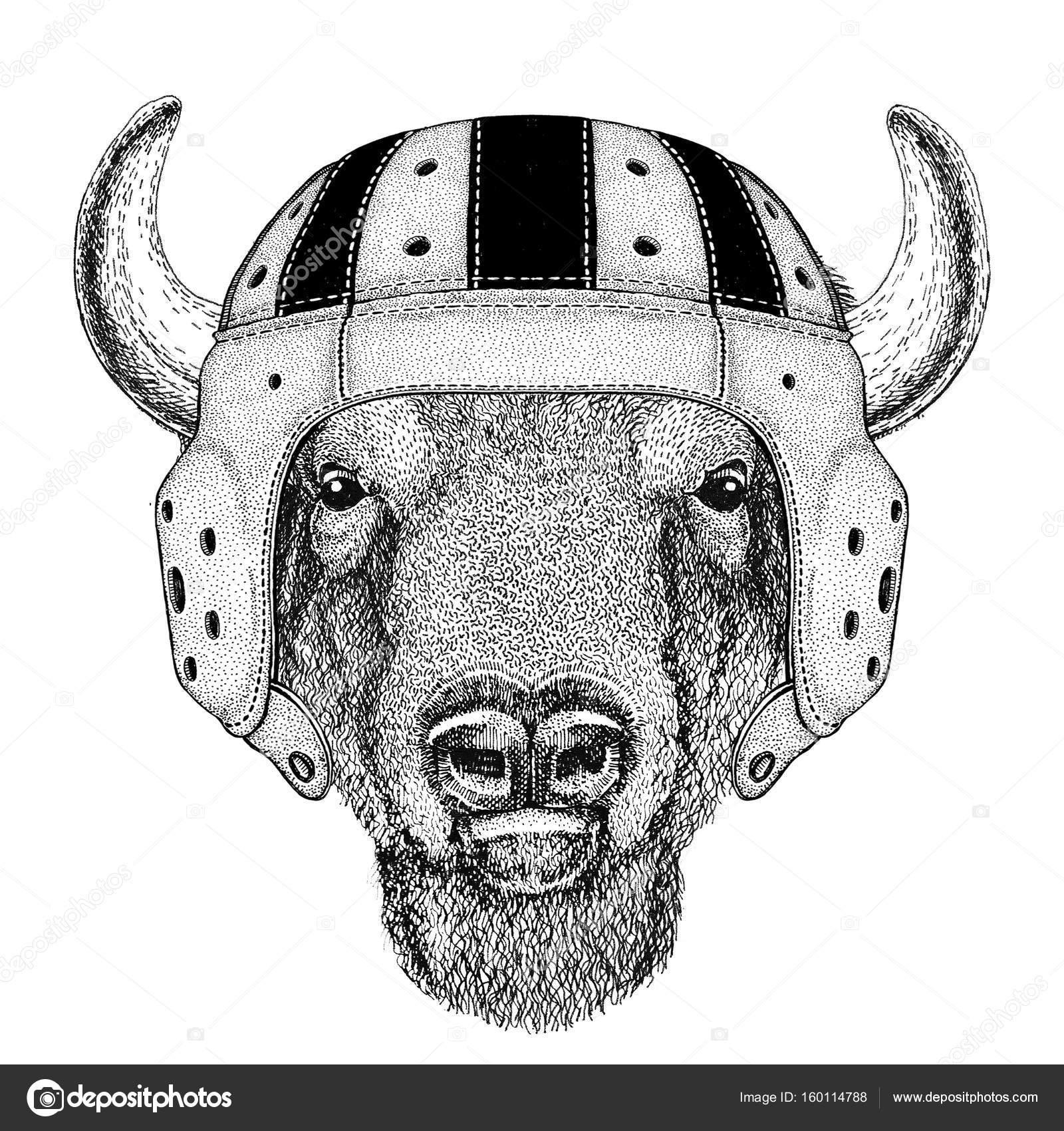 Búfalo, bisonte, buey, Toro animal salvaje con ilustración de ...