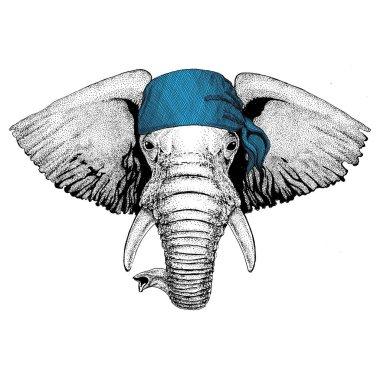 African or indian Elephant Wild animal wearing bandana or kerchief or bandanna Image for Pirate Seaman Sailor Biker Motorcycle