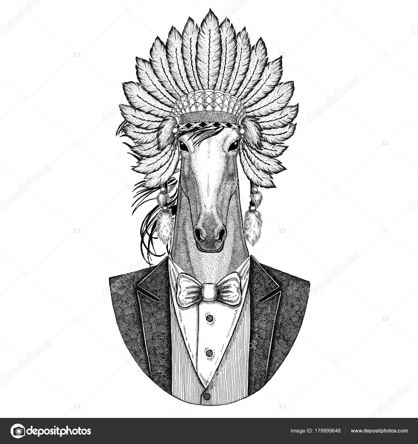 Koń Hoss Rycerz Rumak Courser Inidan Kapeluszu Sukienka Głowy Z