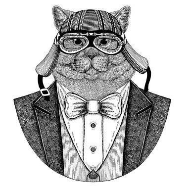 Brithish cat. Elegant animal. Animal wearing jacket with bow-tie and biker helmet or aviatior helmet. Elegant biker, motorcycle rider. Image for tattoo, t-shirt, emblem, badge, logo, patches