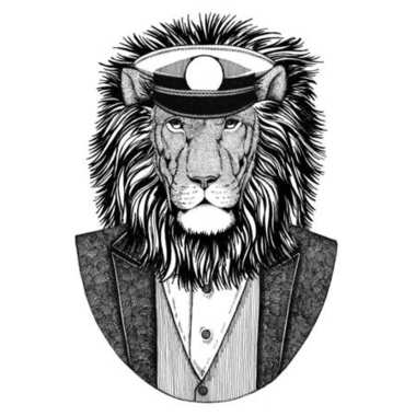 Wild Lion Animal wearing jacket with bow-tie and capitans peaked cap Elegant sailor, navy, capitan, pirate. Image for tattoo, t-shirt, emblem, badge, logo, patches