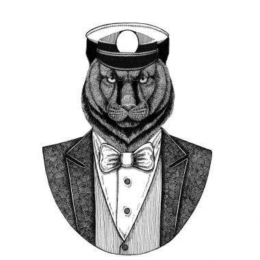 Panther, Puma, Cougar Animal wearing jacket with bow-tie and capitans peaked cap Elegant sailor, navy, capitan, pirate. Image for tattoo, t-shirt, emblem, badge, logo, patches