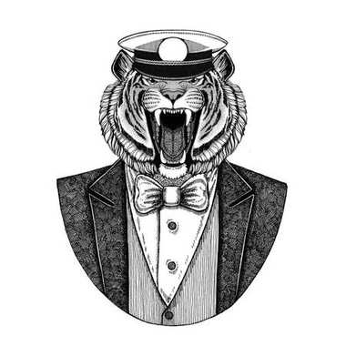 Wild tiger Animal wearing jacket with bow-tie and capitans peaked cap Elegant sailor, navy, capitan, pirate. Image for tattoo, t-shirt, emblem, badge, logo, patches