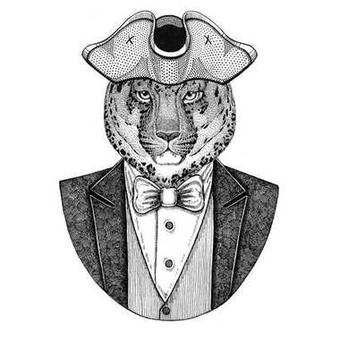 Wild cat Leopard Cat-o-mountain Panther Animal wearing cocked hat, tricorn Hand drawn image for tattoo, t-shirt, emblem, badge, logo, patches