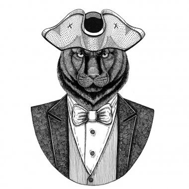 Panther, Puma, Cougar, Wild cat Animal wearing cocked hat, tricorn Hand drawn image for tattoo, t-shirt, emblem, badge, logo, patches
