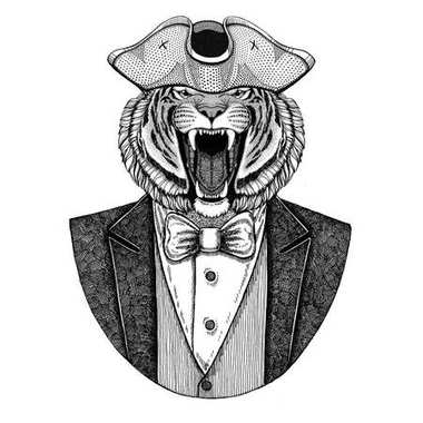 Wild tiger Animal wearing cocked hat, tricorn Hand drawn image for tattoo, t-shirt, emblem, badge, logo, patches