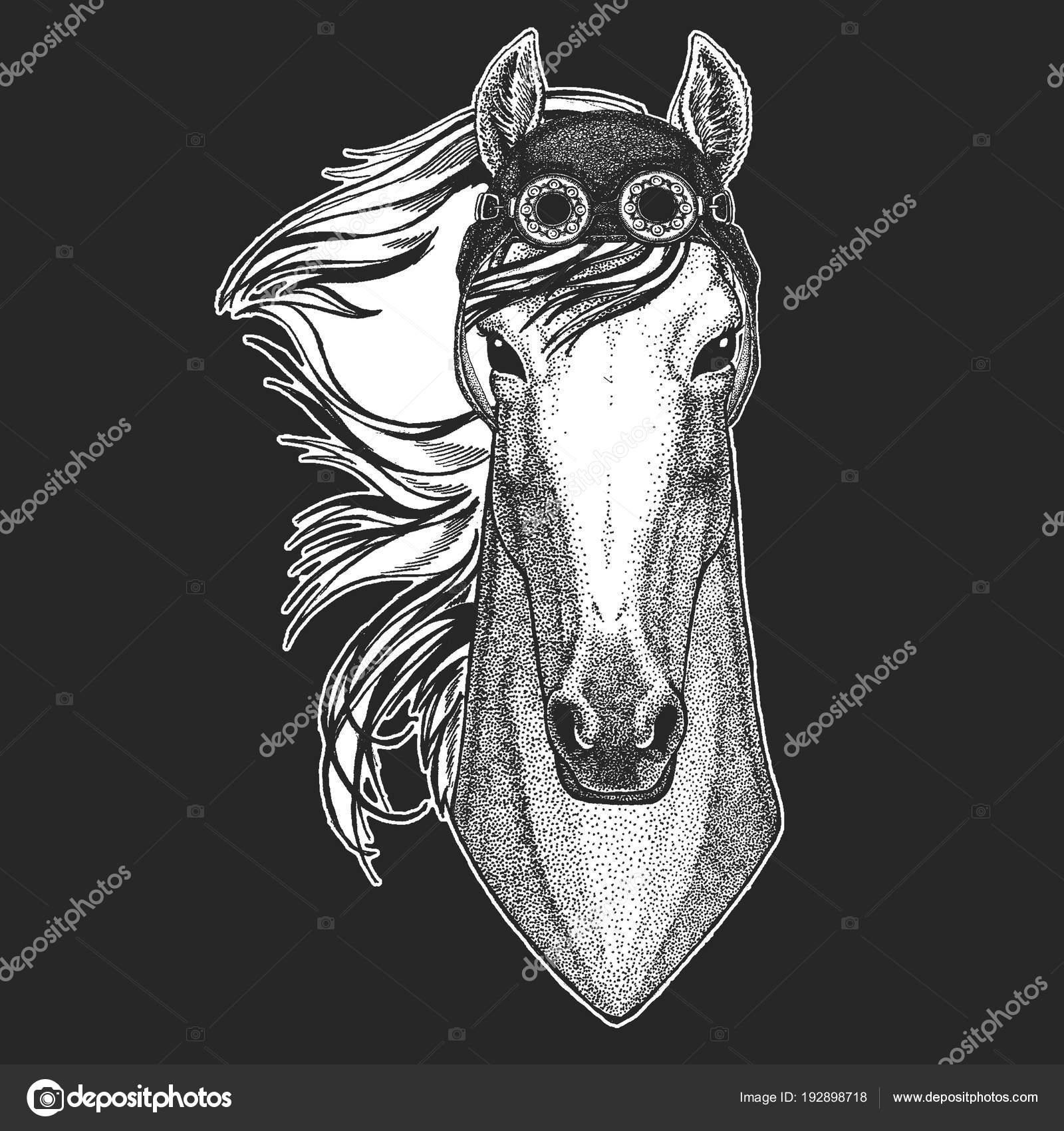 Hoss Ritter Pferd Pferd Renner Hand Gezeichnete Bild Für Tattoo