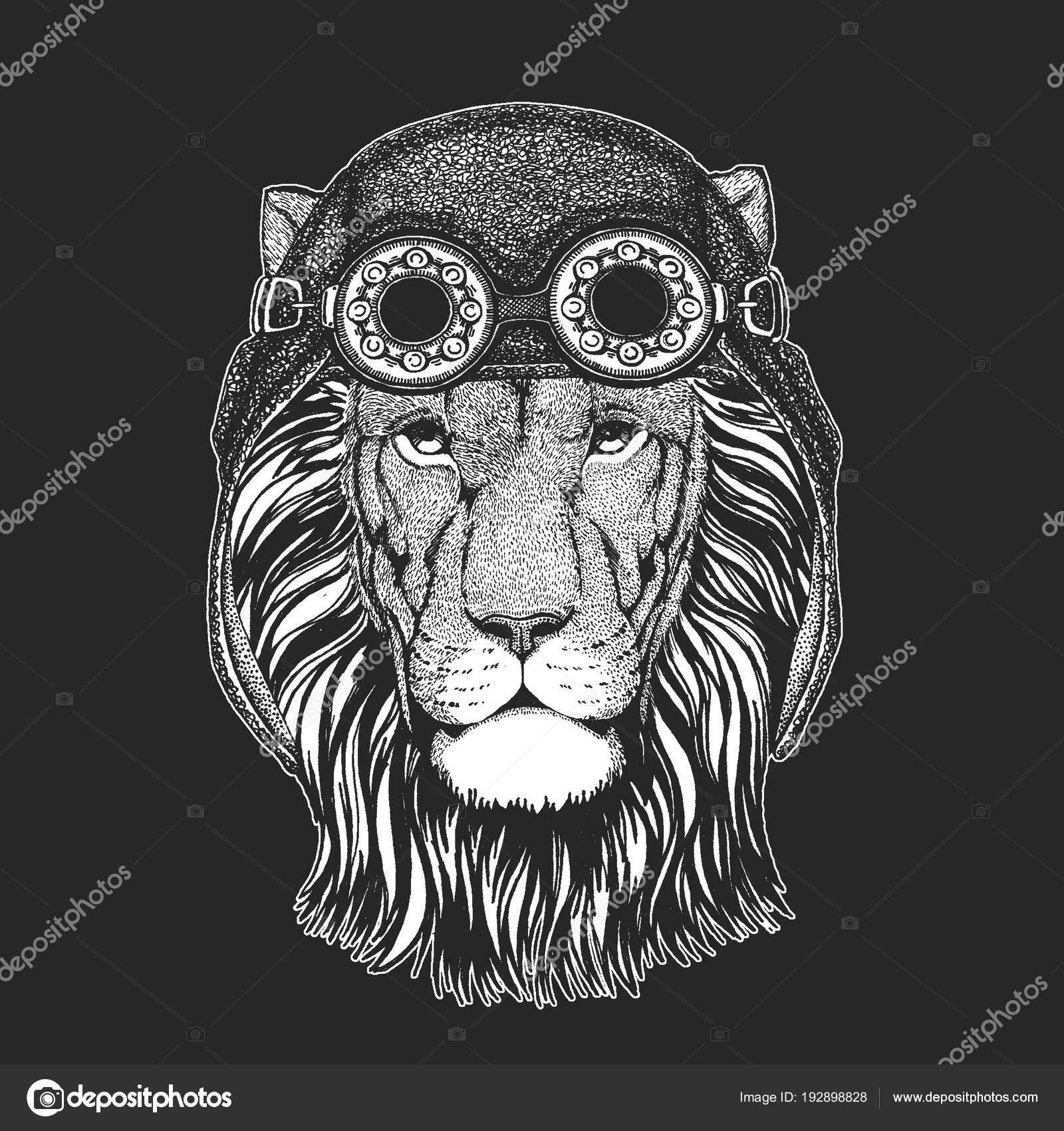 Wilde Löwen Hand Gezeichnet Bild Für Tattoo Emblem Abzeichen Logo