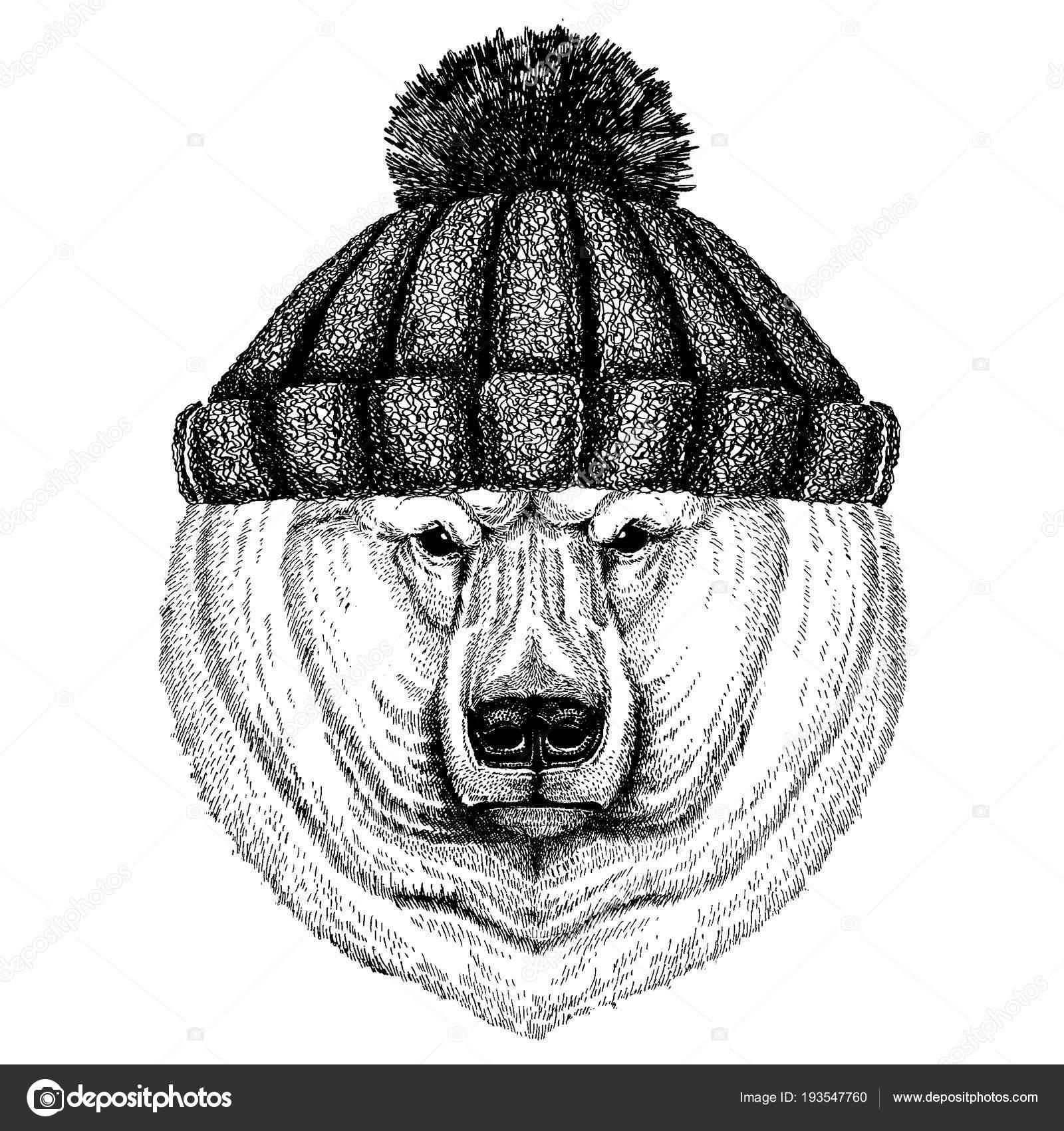 Gran oso polar, oso blanco fresco animal uso de punto sombrero del ...