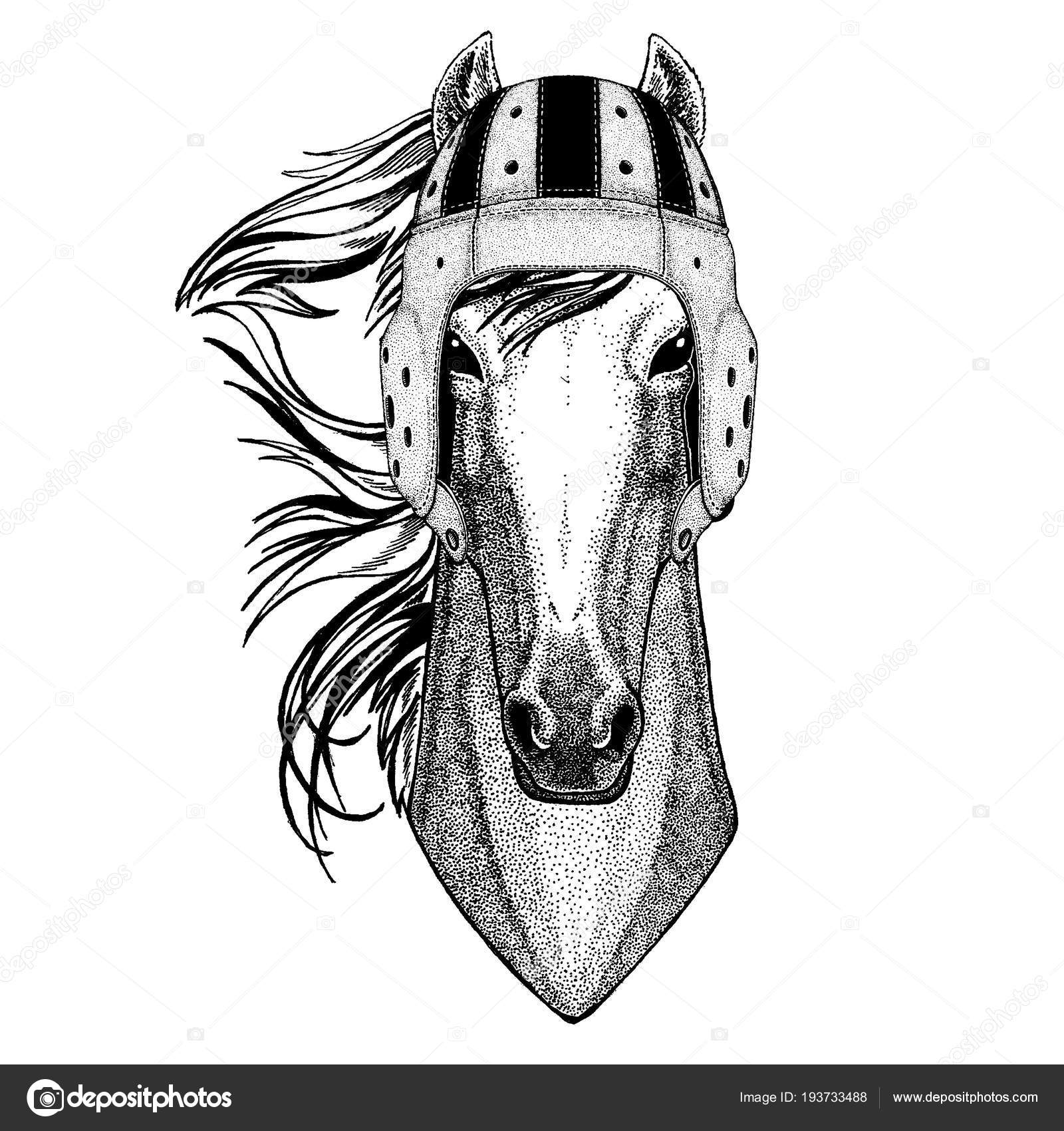 Coole Tiere Tragen Helm Extremsport Rugbyspiel Pferd Hoss Ritter
