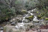 Cagademos creek dal Parco nazionale di Peneda Geres