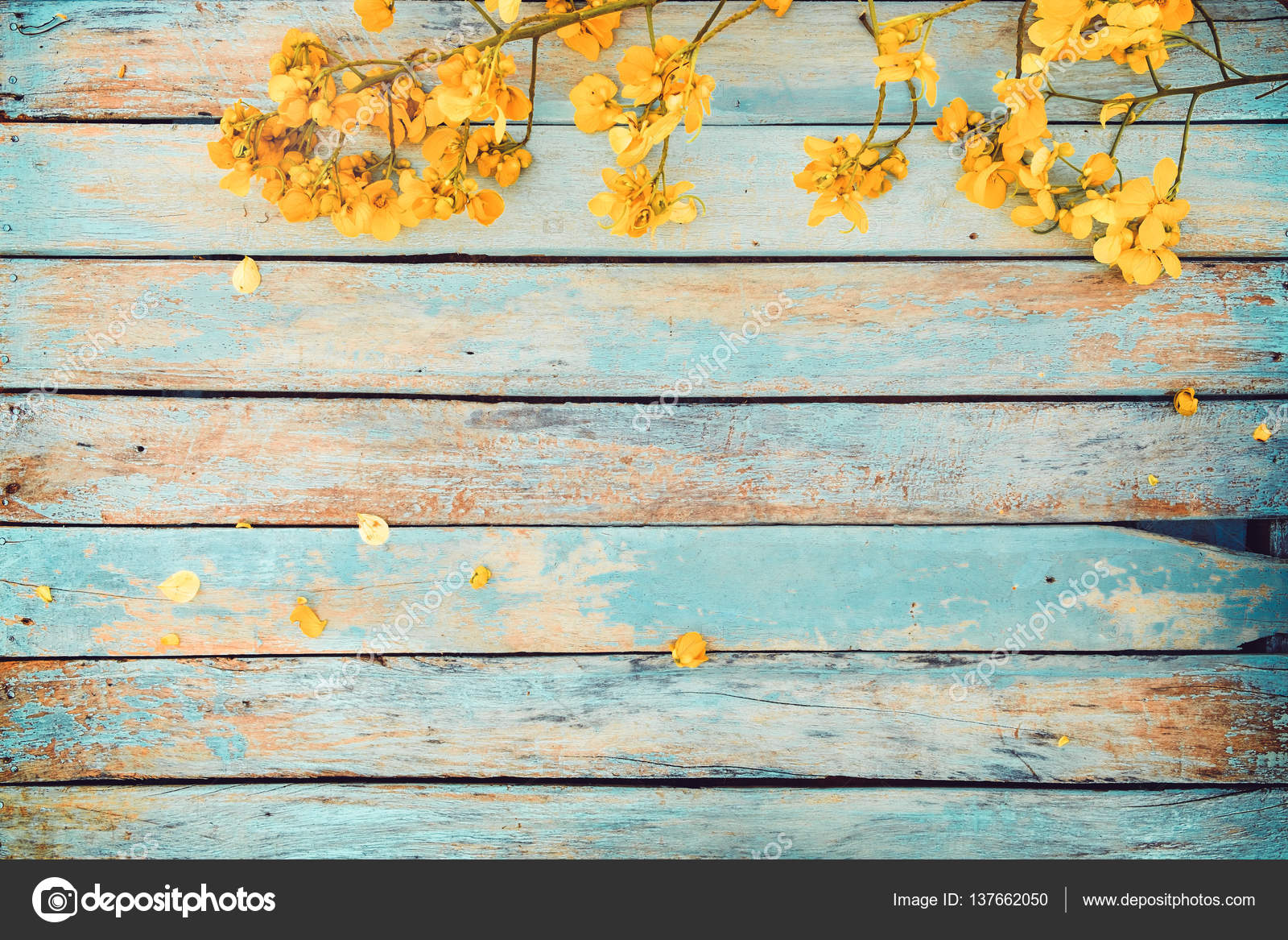 Yellow flowers on vintage wooden background — Stock Photo