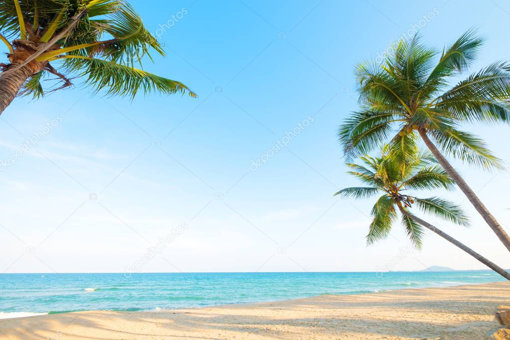 Beautiful landscape of coconut palm tree on tropical beach (seascape) in summer. Summer background concept.