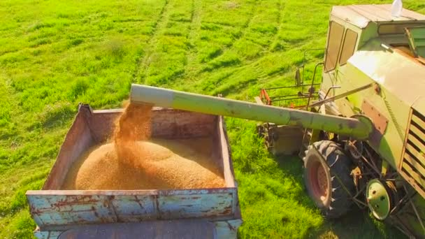 Letecký pohled. Zemědělské stroje pracující v zeleném poli v době sklizně