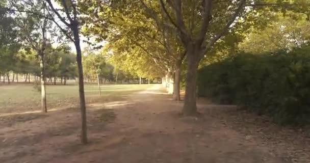 falusi ösvény fákkal ősszel