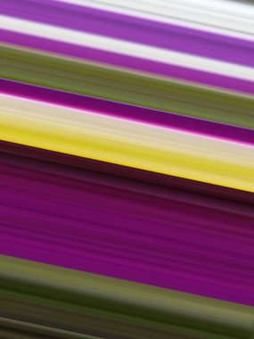 abstraction with colored parallel lines