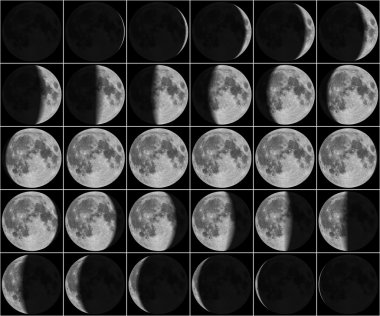 Moon 30 day phases