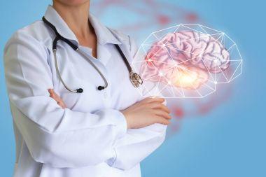 Doctor shows a human brain.
