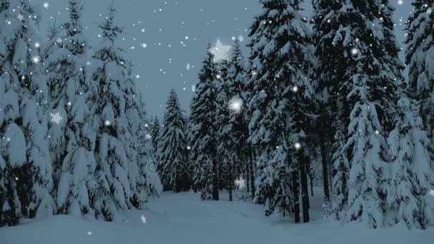 Zimní zasněžené lesní sněhem pokryta stromech, padajícího sněhu a hvězd. Vánoce, nový rok zpomalené animaci. HD 1080