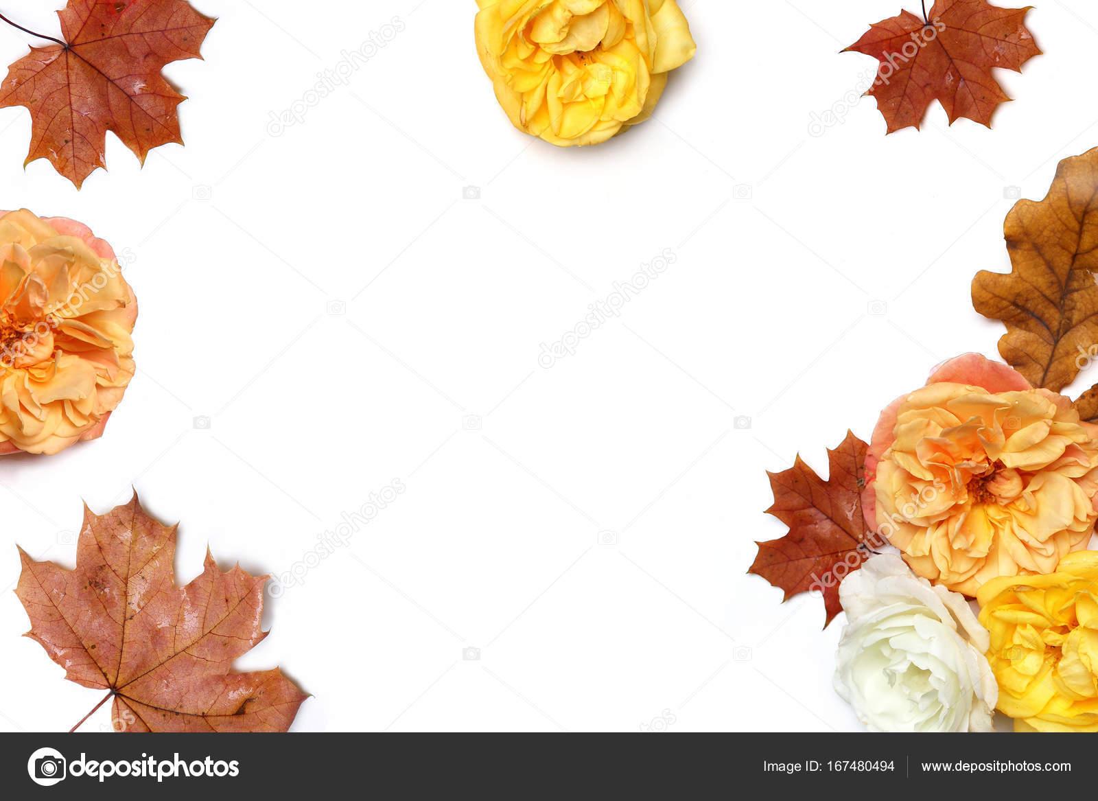 Marco Flores otoño de arce colorida y hojas de roble y pérdida de ...