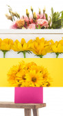 Photo collage of yellow and pink flowers and wooden bench on white