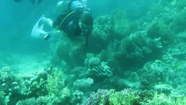 Scuba Divers Swimming Over Coral Reef