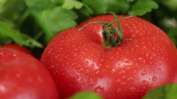 Celerová nať, rajčata a okurky zblízka