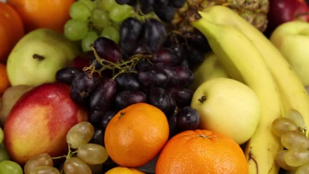 A female hand lays a bunch of dark grapes on a large pile of different fruits