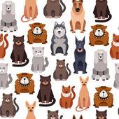 Fotografie Roztomilé kočky a psi