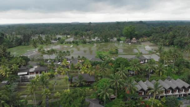 Aufsteigende Luftaufnahme eines Luxushotels mit Strohdachvillen und Pool im tropischen Dschungel, Palmen, Reisfeldern. Luxuriöse Villa, Pavillon im Wald, Ubud, Bali
