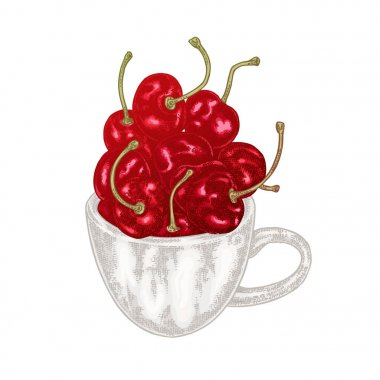 Hand drawn cherry in cup vector illustration. Fruit sketch isolated on white background