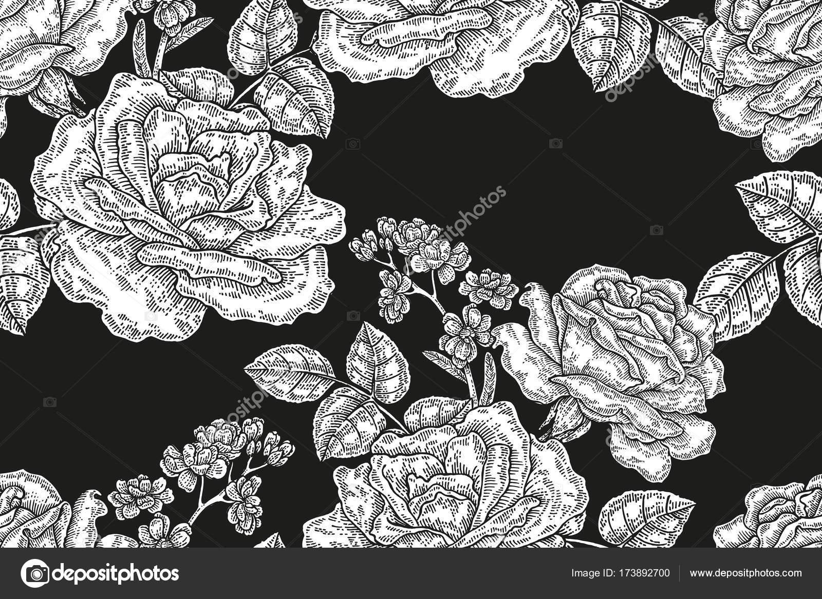 Patrón transparente con rosas vintage. Gráfico del blanco y negro ...