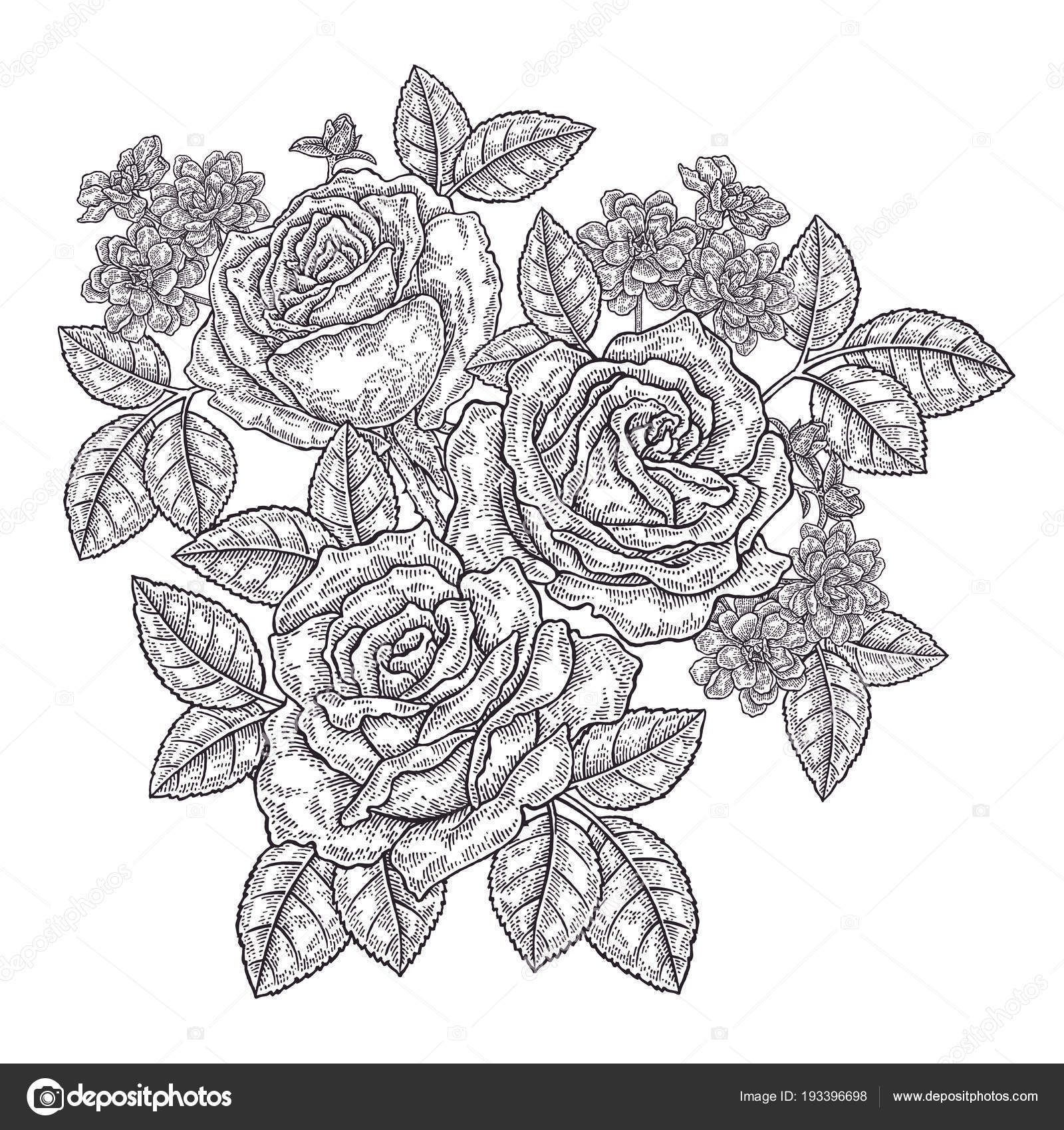 hand drawn rose flowers and leaves vintage floral composition with