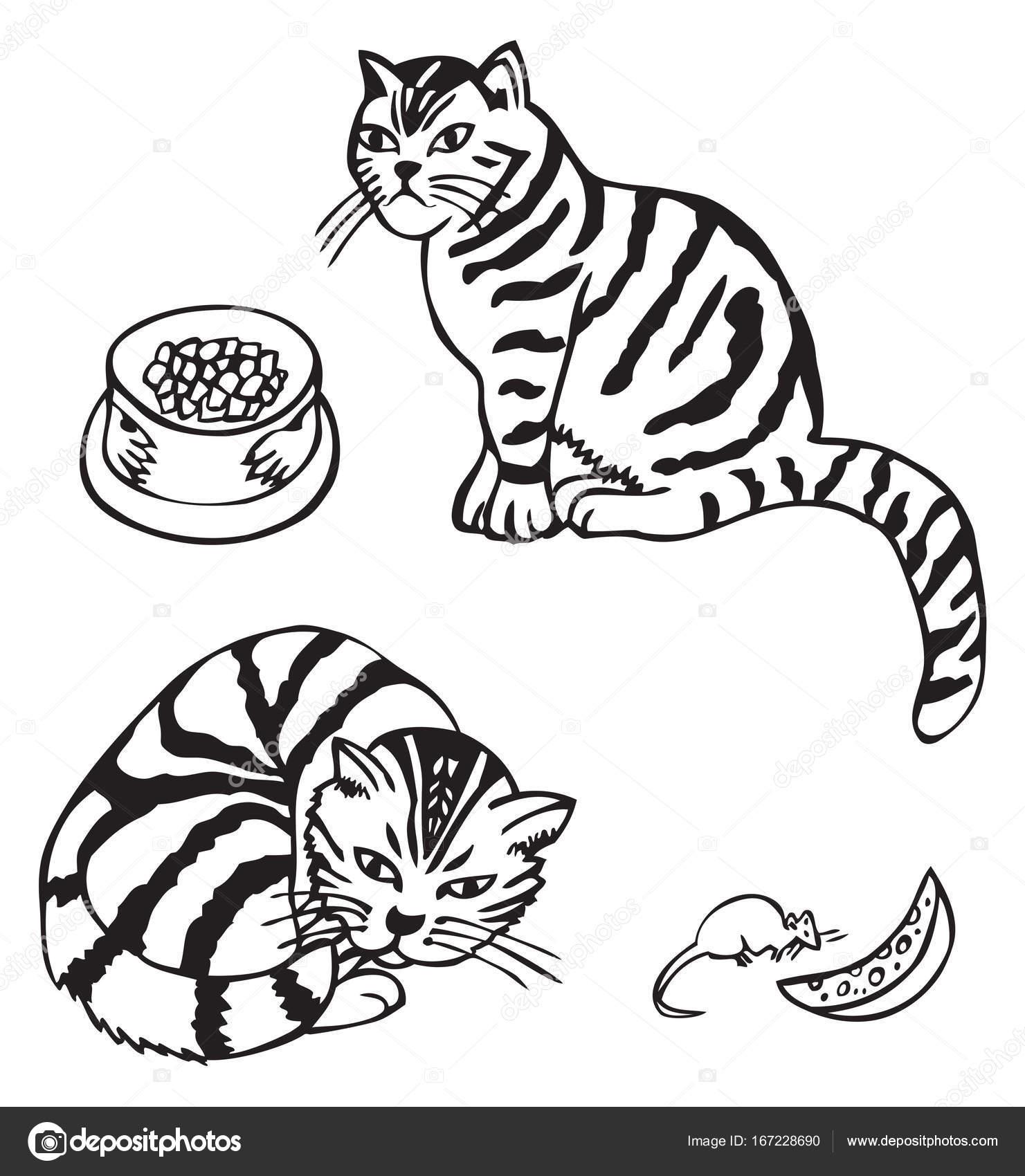 Kot I Mysz Z Serem Grafika Wektorowa Olga1983siv1 167228690
