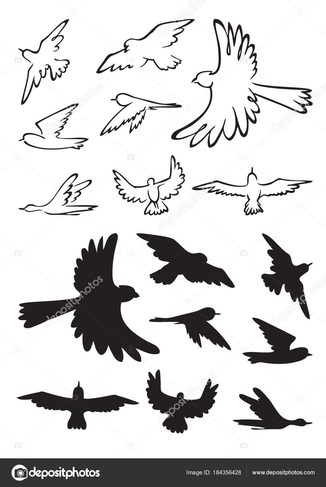 vögel im flug silhouette  vektorgrafik lizenzfreie