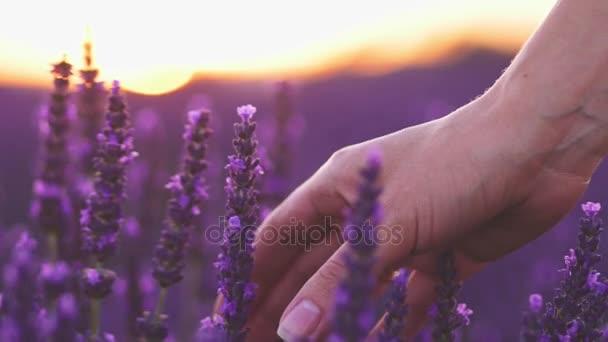 Ruční barva květiny