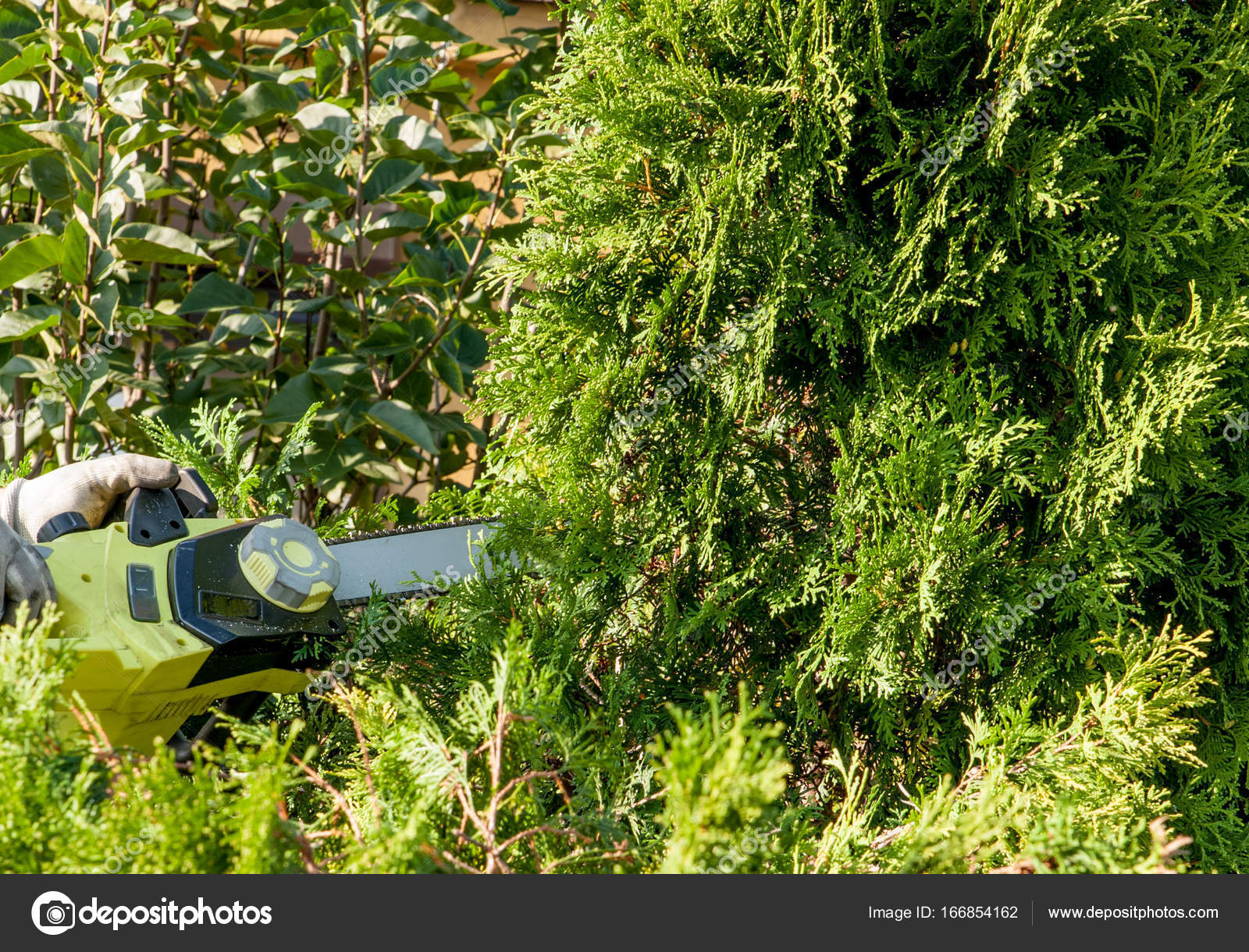 Sehr Büsche schneiden / trimmen die Büsche — Stockfoto © damiangretka SM85
