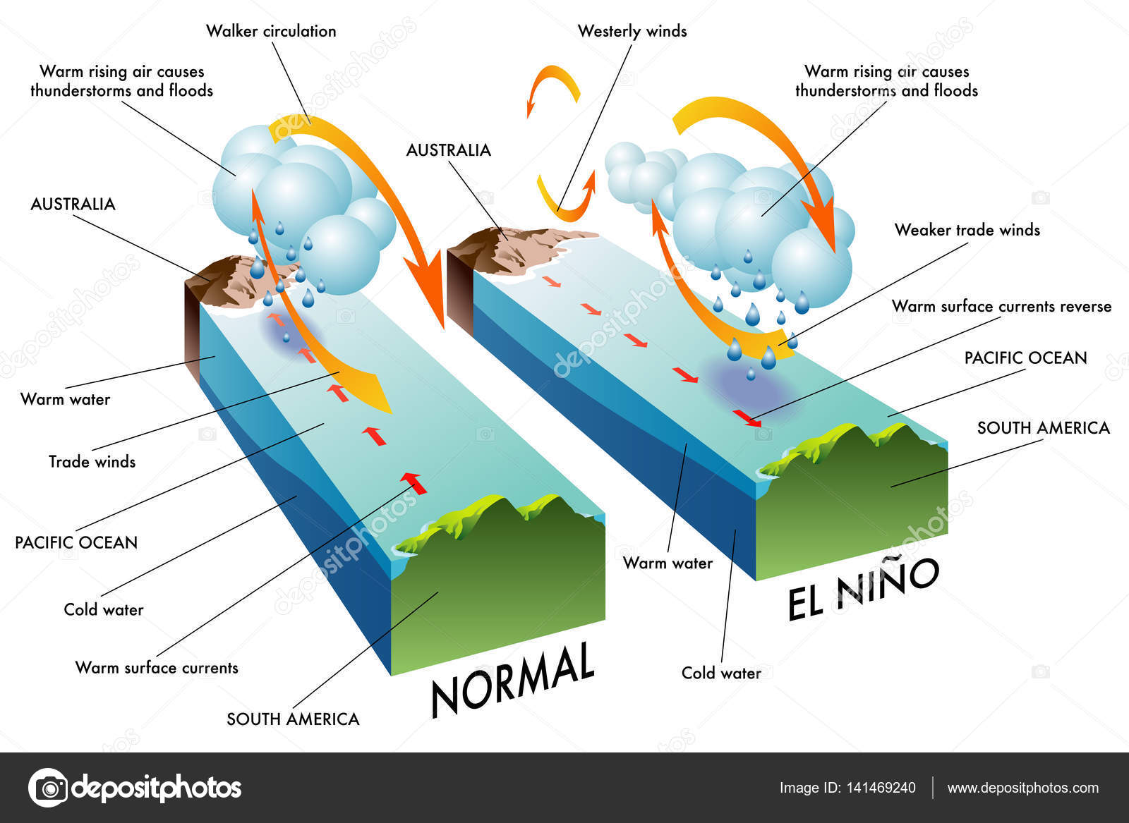 understanding the phenomenon of el nino I ask the young scientific community in the world who studies the phenomenon of el niño, do not forget the early work of mc phaden, quinn, van loon, namias, rasmusson, zebiak, cane, caviedes, arntz, namias, glantz, wyrtki, not to mention walker and bliss, henry diaz, ropelewsky, trenberth.