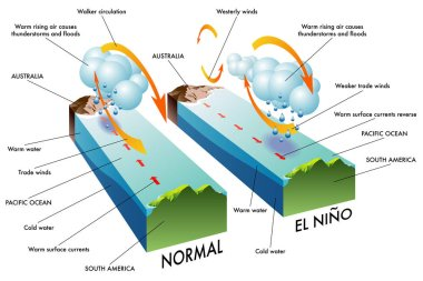 Cross section of El Nino South