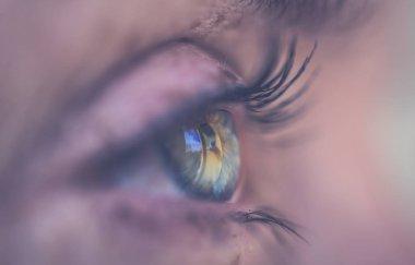 Eye macro. Side view of blue female eyes