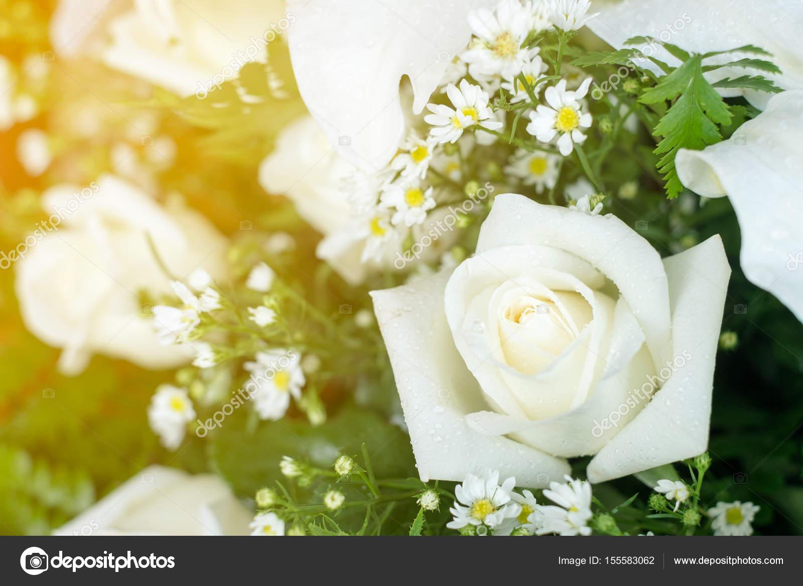Hochzeit Brautstrauss Mit Weissen Rosen Und Ganseblumchen Stockfoto