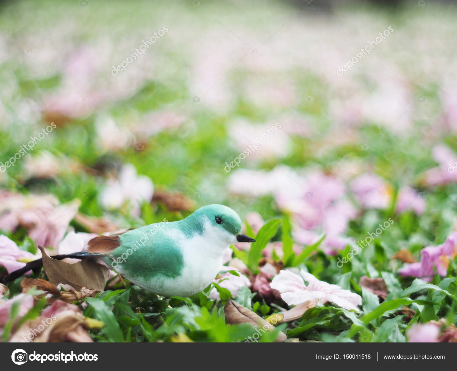Small Green And White Bird On Grass Ground With Pink Flowers Fal