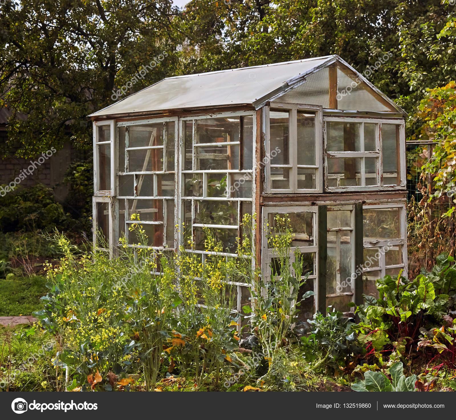 Kleines Gewachshaus Von Alten Fenstern Stockfoto