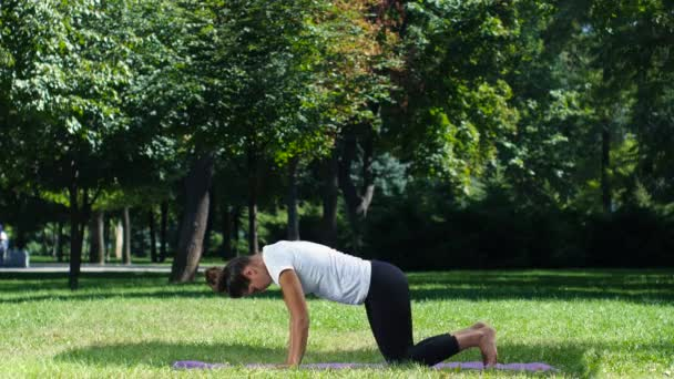 Woman practice yoga, yoga pose