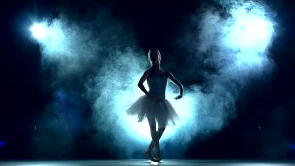 ballet dancer in white tutu, Smoke, fog, slow motion