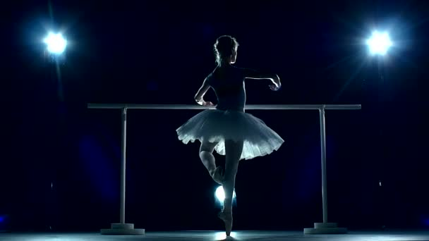 Beautiful female ballet dancer on a blue, Ballerina is wearing  tutu. slow motion